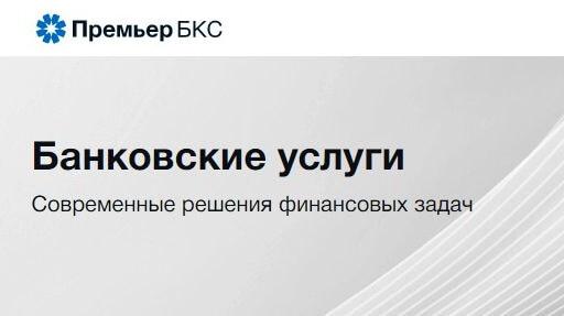 консалтинговая компания Премьер БКС
